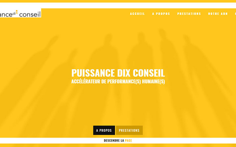 Puissancedixconseil.fr