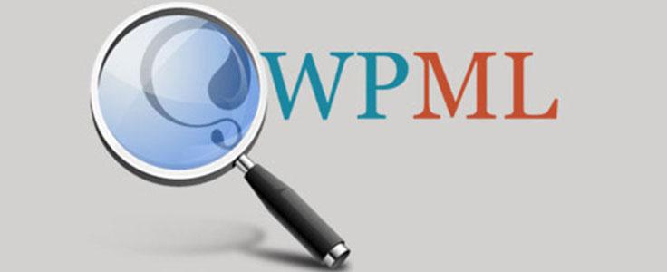 Rediriger un formulaire de recherche avec WPML